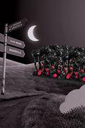 La Forêt Noire par Christophe Adam